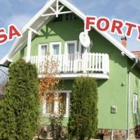 Pensiune Casa Fortyogo