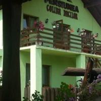 Pensiunea Coliba Dacilor
