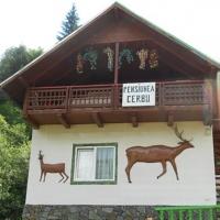 thumb-p55fbaef4454588728-Pensiunea-Cerbul-Cazare-Valea-Lotrului-9822d2a2e6f2-612-999-1-85.jpg